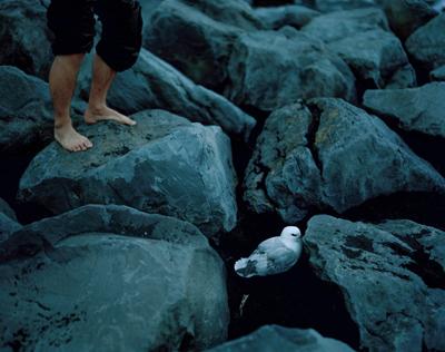Untitled, Iceland, 2013