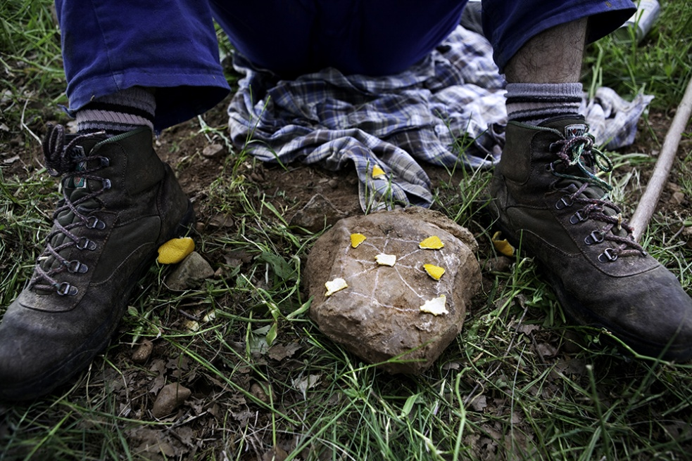 Art and Documentary Photography - Loading Shepherds 10.jpg