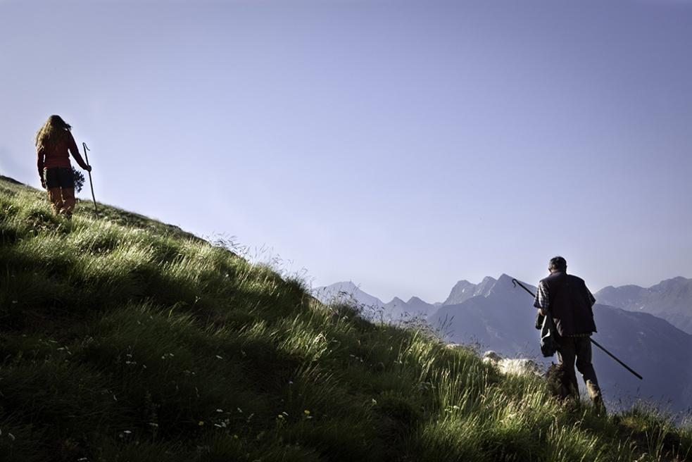 Art and Documentary Photography - Loading Shepherds 18.jpg