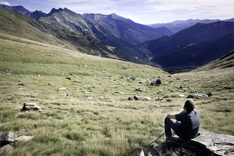 Art and Documentary Photography - Loading Shepherds 21.jpg