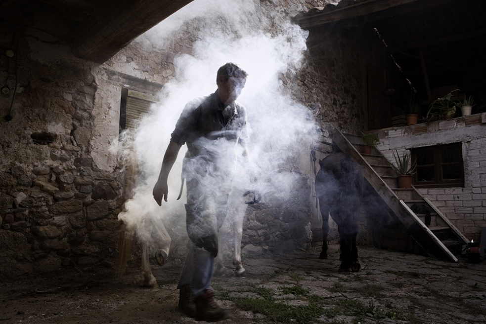 Art and Documentary Photography - Loading Shepherds 26.jpg