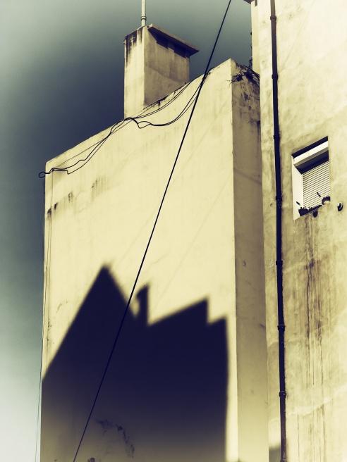 Photography image - Loading Patricia Ackerman (1).jpg