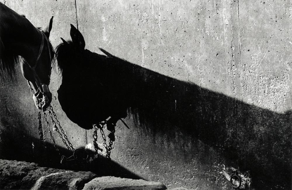 Art and Documentary Photography - Loading rothwell7 copys.jpg