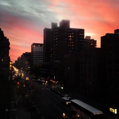 Twilight Tricolor, NYC
