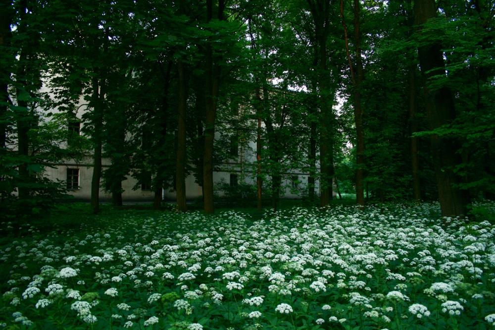 Photography image - Loading Svetlana-Volodina-03.jpg