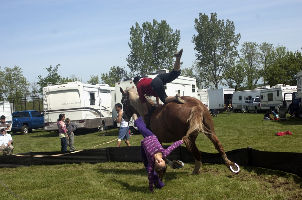 Art and Documentary Photography - Loading horse practice flip.jpg