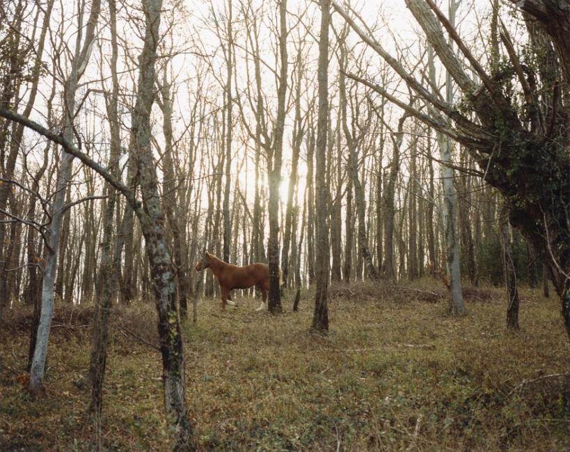 Art and Documentary Photography - Loading Thetimeofdreamingtheworldawake-5.jpg