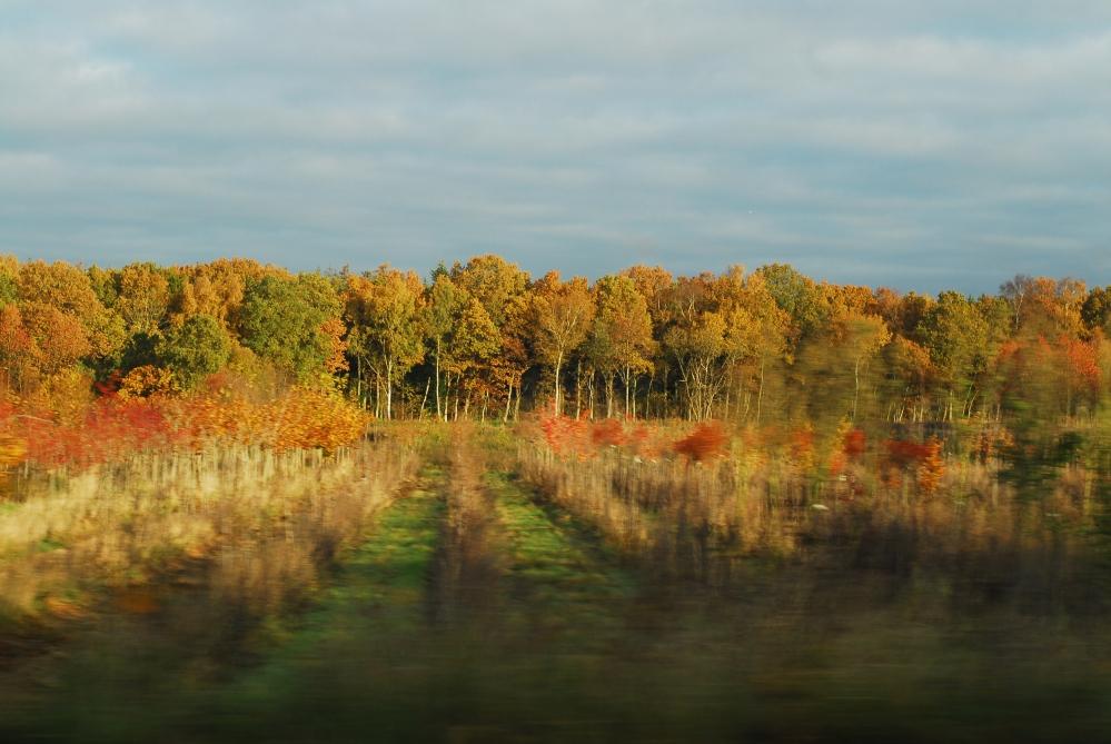 Autumn, Denmark