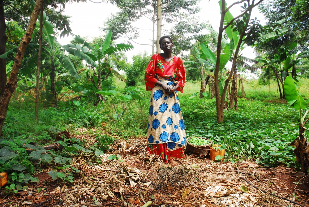 Sanyu is living with AIDS and is the sole caretaker of her three children some of which are HIV+. Through a livelihood program which gave her seed, Sanyu sustains her family off the sale of sorghum crops.