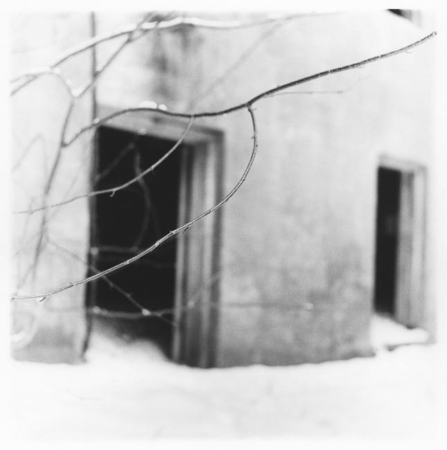 Branch and Doorways