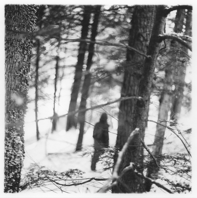 Figure in the Forest