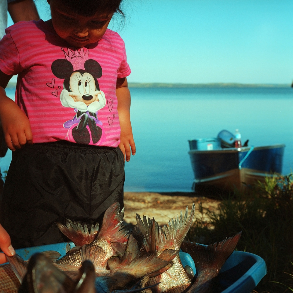 September 2013- Joely Grandjambe, 3, looks at a catch of White Fish and Pickerel that were netted at Moose Lake Reserve. Moose Lake is the only hunting ground left for the Fort McKay First Nation that remains pristine, but a new development called the Dover Project that will boarder Moose Lake is threatening the health of the land and water.