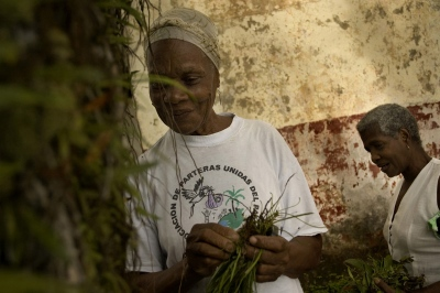 BUENAVENTURA,VALLE DEL CAUCA, COLOMBIA, The midwives make use of diverse plants in their work, thanks to the ancestral knowledge of herbal remedies that forms part of their tradition as AfroColombians.