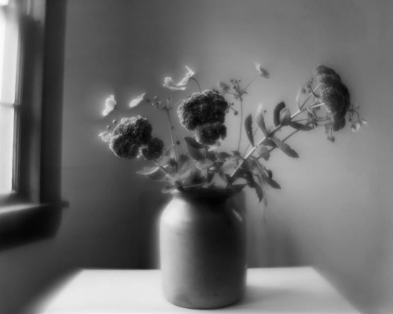 Art and Documentary Photography - Loading Efke Monhegan 1.jpg