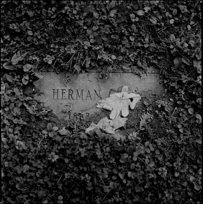 Photography image - Loading cementery-old-tombstone (1).jpg