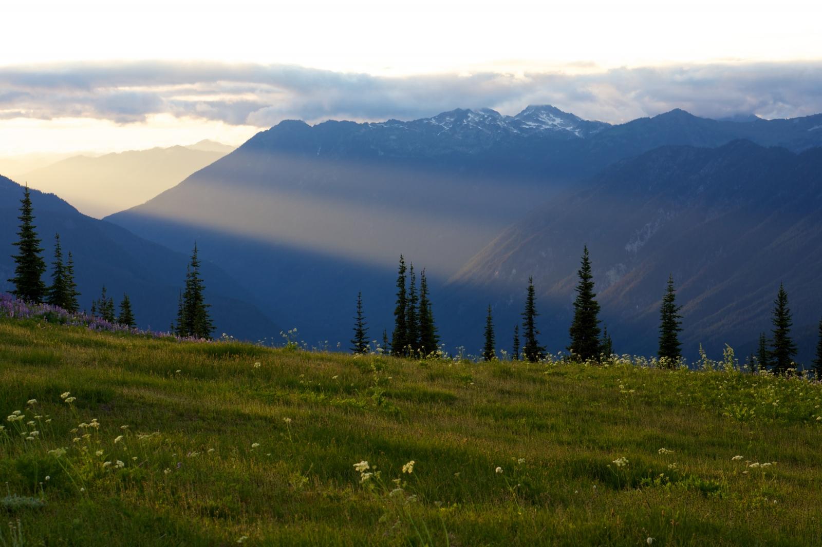 Art and Documentary Photography - Loading Rakesh-Glacier-Peak-Wilderness0086.jpg
