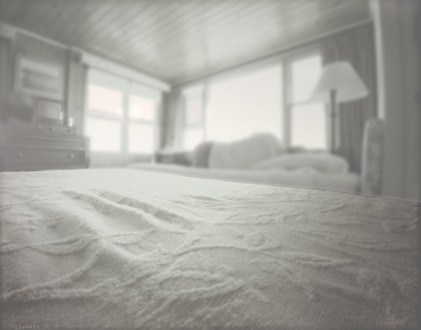 Art and Documentary Photography - Loading Maine man on bed 2007.jpg