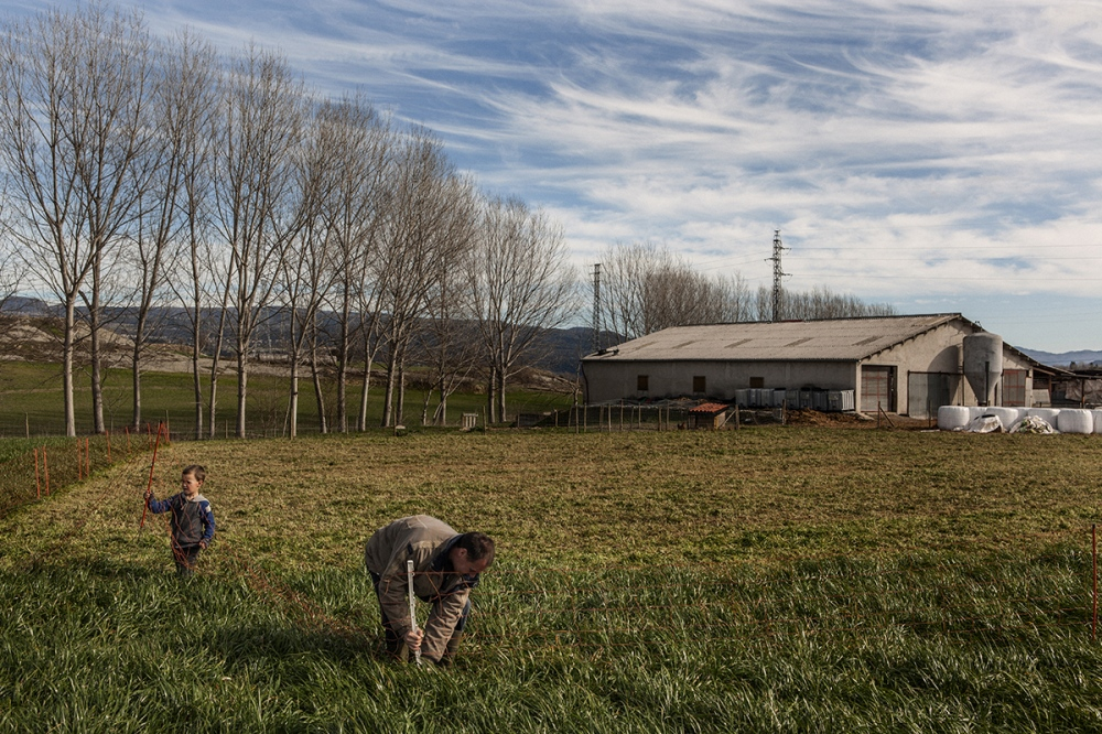 Xevi Crosas (33) works with his son Nil in El Serradet de Barneres, a new farm in Manlleu, Plana de Vic. Xevi was student of the School of Shepherds in 2009, and now is ruling his own farm in a cooperative with a friend and his wife.
