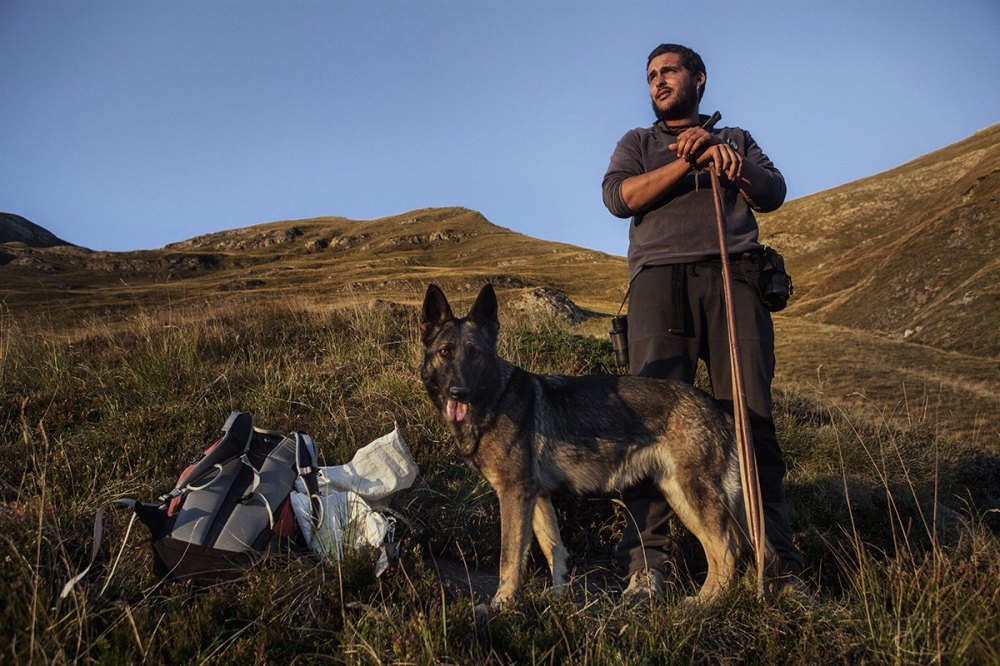 Marc García (26), doing his practices of shepherd in the mountains of Salau. Marc received special training from a pastor specialized in dogs.