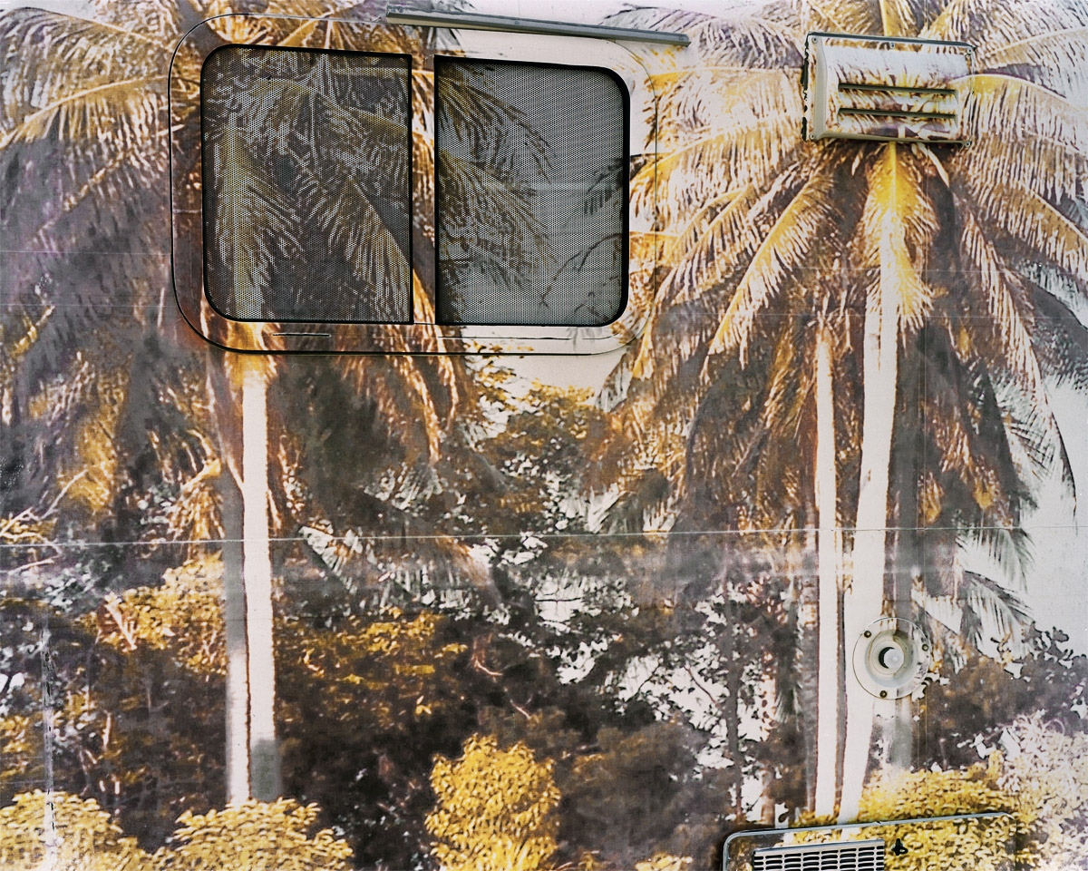 Camper with Palm Trees, MA 2010
