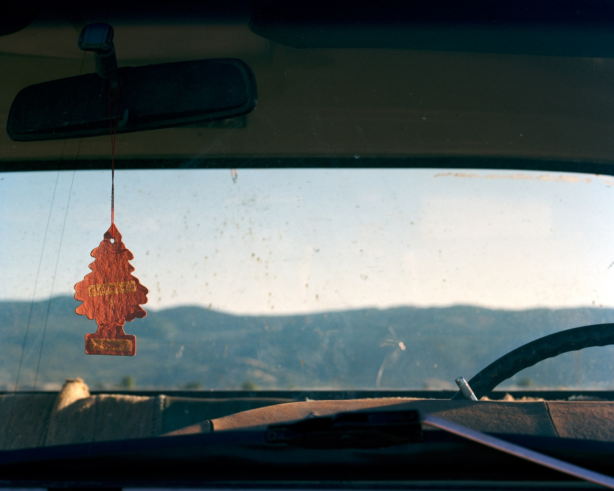 Little Tree Air Freshener, 2008