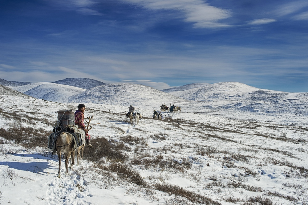 Mongolia. Dukha nomads on their way to wintercamp.