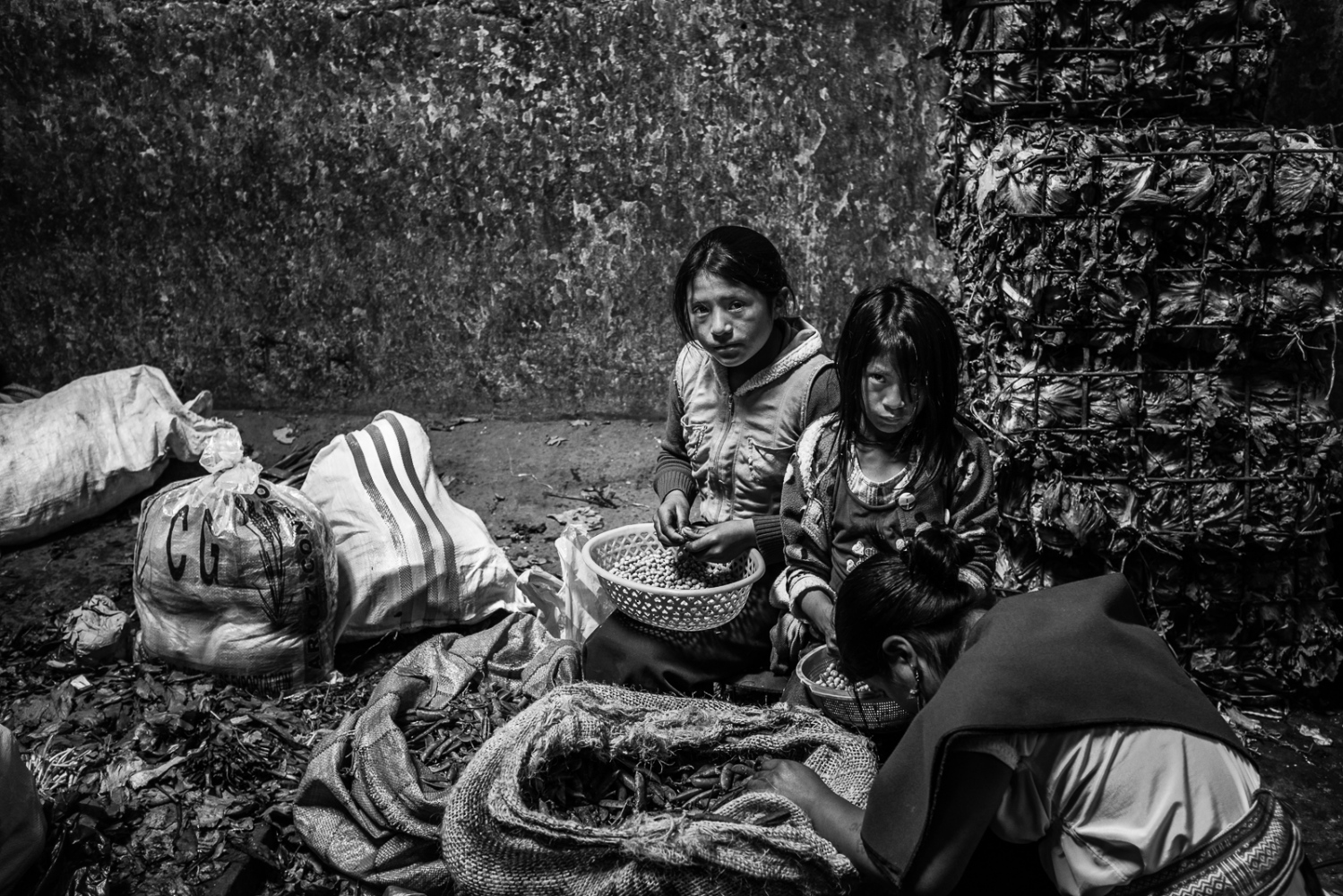 Art and Documentary Photography - Loading guerra_mercado_15.jpg