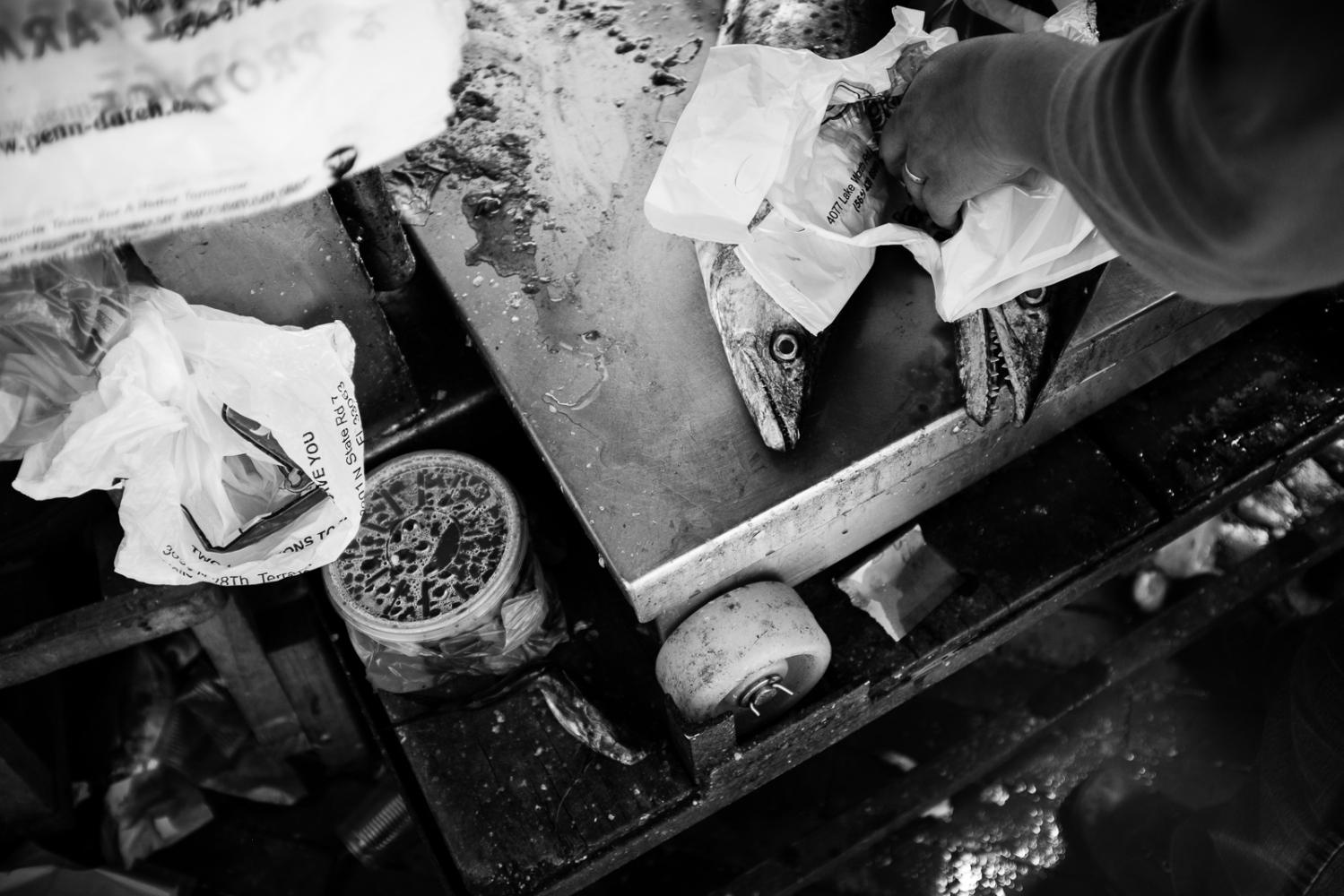 Art and Documentary Photography - Loading guerra_mercado_40.jpg