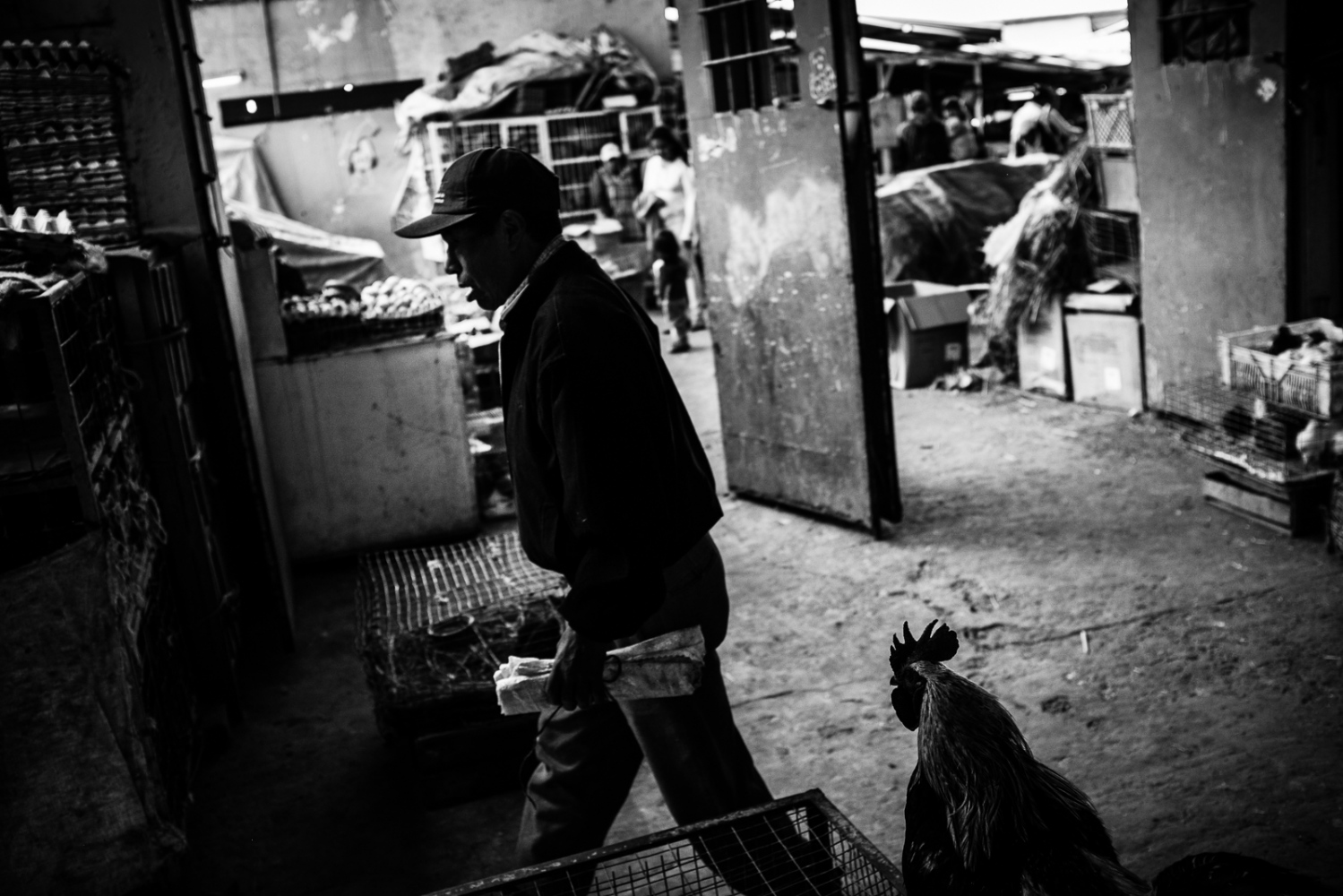 Art and Documentary Photography - Loading guerra_mercado_59.jpg