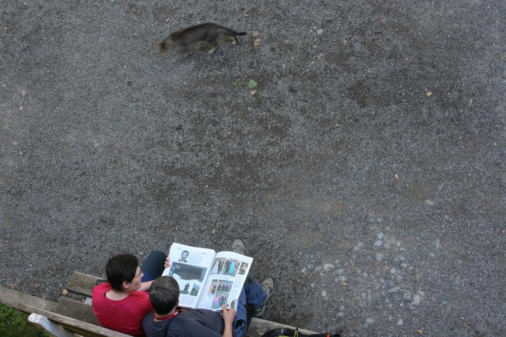 Photography image - Loading 28062008-6 Junio 2008 48.jpg