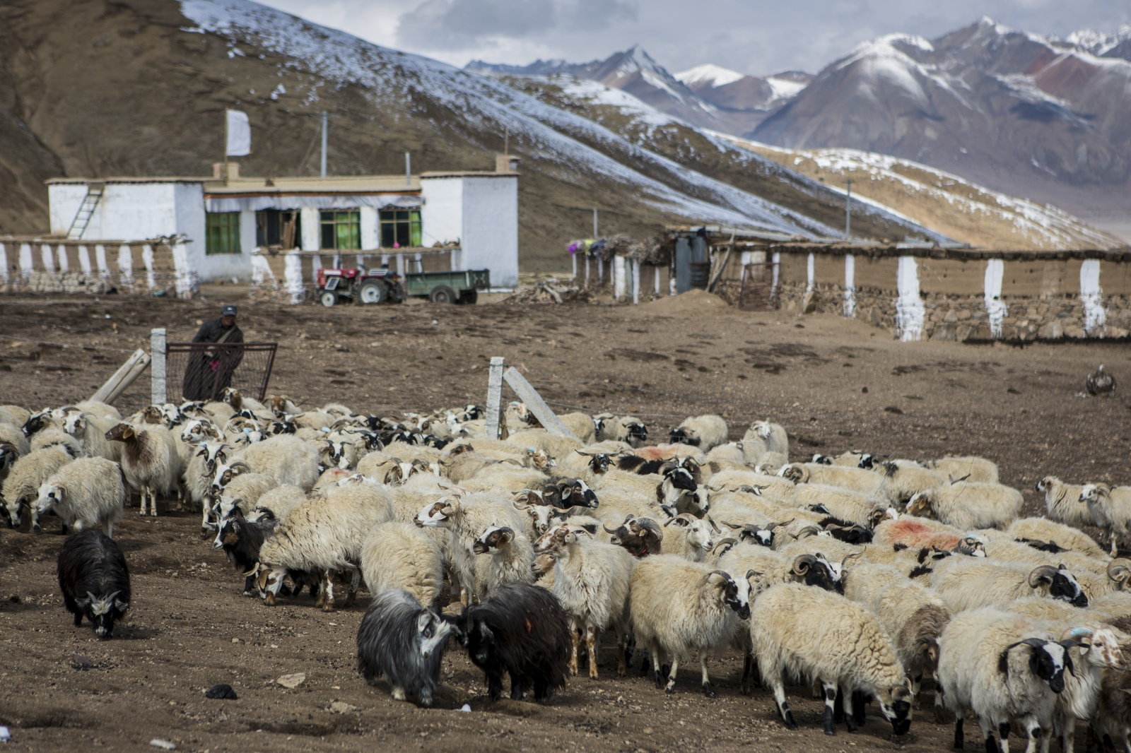 Art and Documentary Photography - Loading tibet-21.jpg