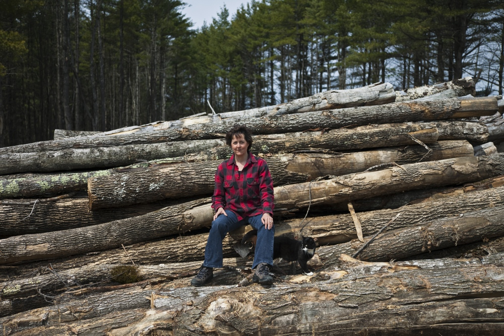 Photography image - Loading Maine01.jpg