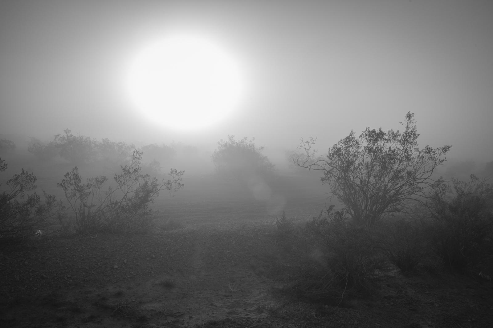 Art and Documentary Photography - Loading mint_400-17.jpg