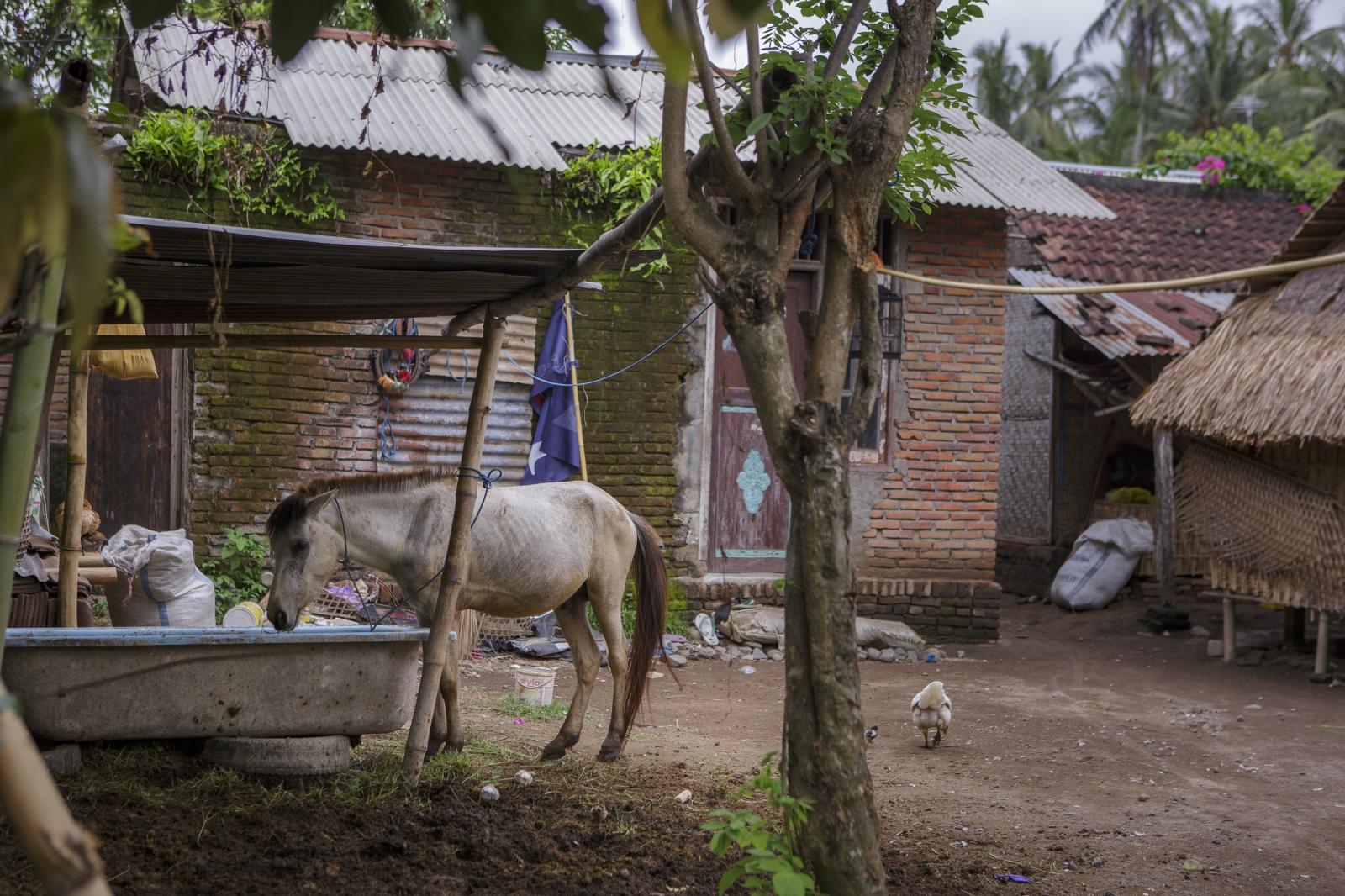 Art and Documentary Photography - Loading indonesia-3.jpg