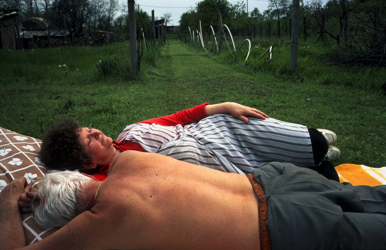 Lojos and Erzsébet Toth, nap in their small vineyard on the outskirts of Budapest, Hungary.