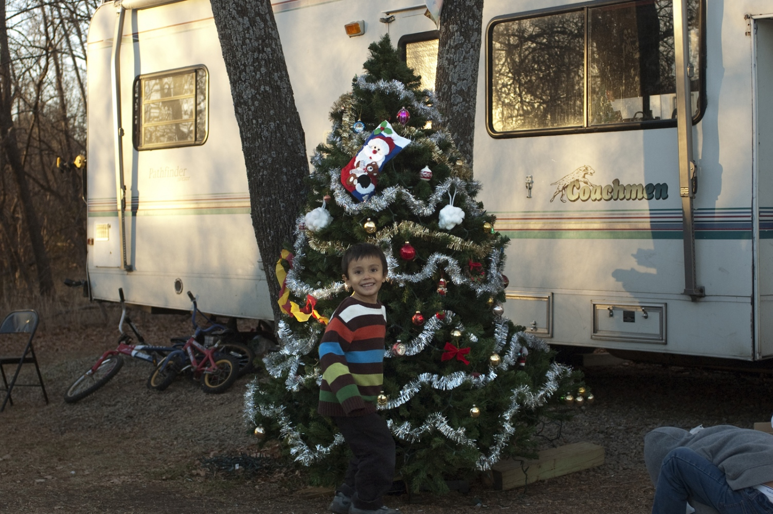 Art and Documentary Photography - Loading 13 dec 2012 Xmas tree N.jpg