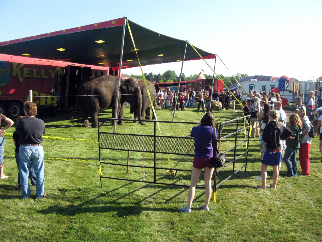 Art and Documentary Photography - Loading crowds elephants #2 8-1-09.jpg