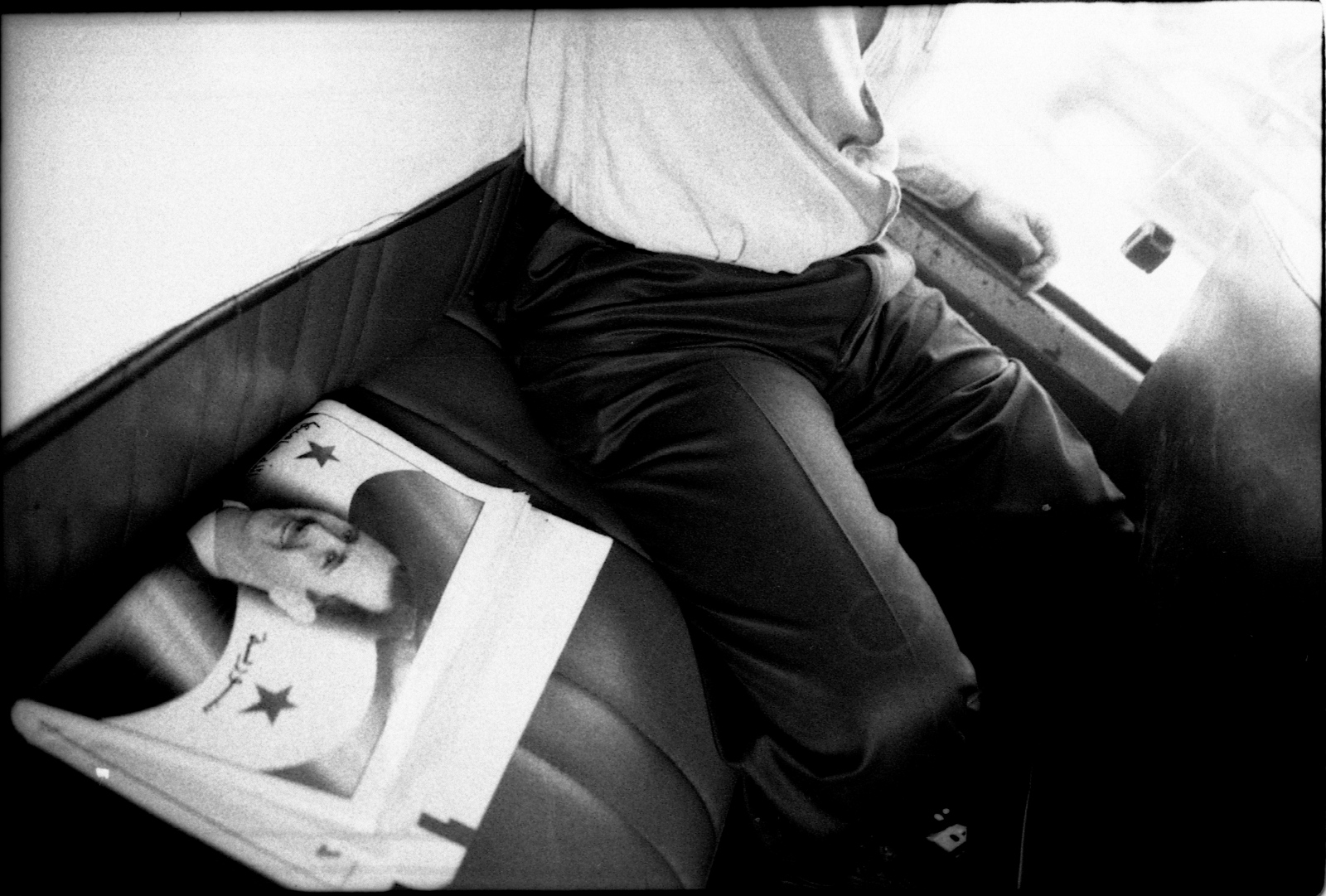 Art and Documentary Photography - Loading lions (19 of 27).jpg
