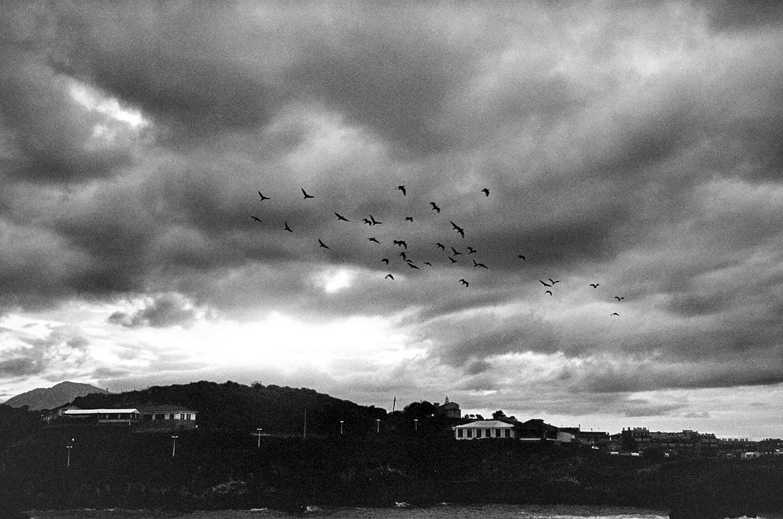 Llanes, Costa Verde.