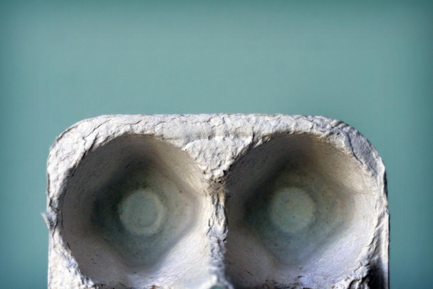 Art and Documentary Photography - Loading 2014-May-EggCarton.jpg