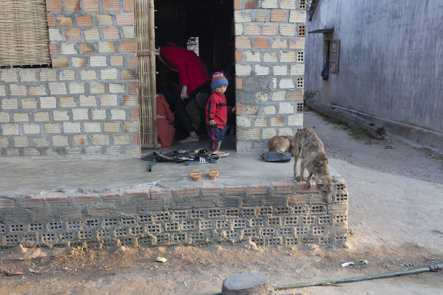 Child playing with a dog.