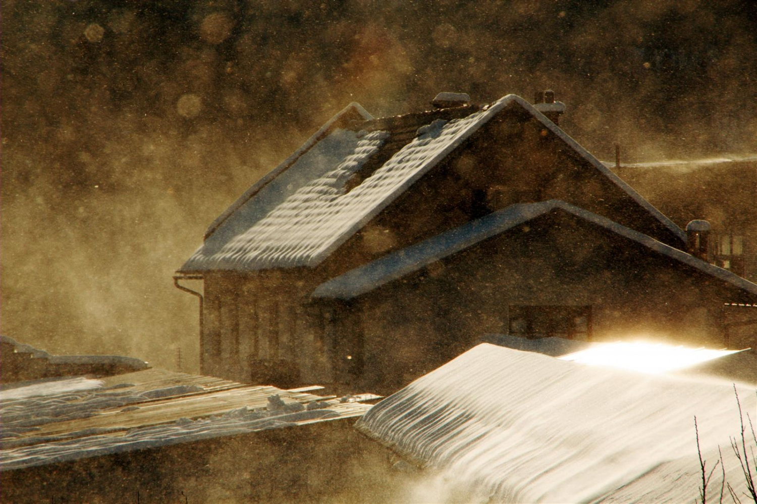 Snowstorm in the magic hour Photography,...