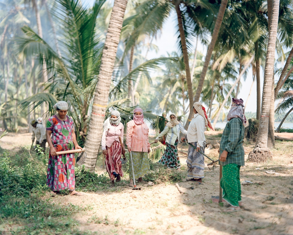Valiyaparamba Island in the northern backwaters of Kerala. Local women are employed by the government to maintain the land.