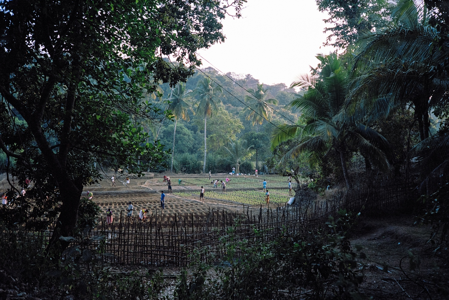 South Goa.