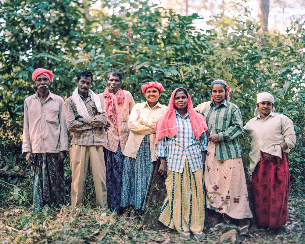 Forest Keepers in Kallar, near Munnar. Munnar is famous for its tea, coffee and spice plantations.