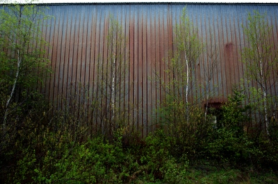 Abandoned Factory. Deer Isle, ME. 2014 (An ungoing, untitled project exploring connections with my grandfather's family.)