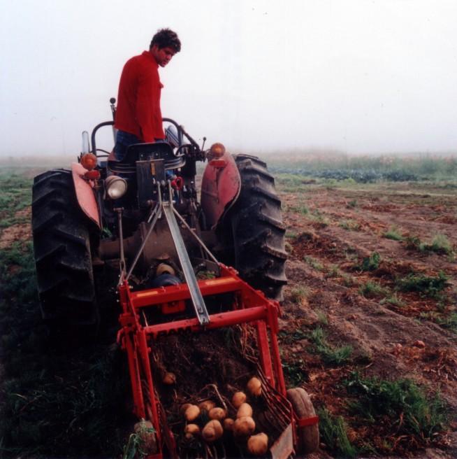 Art and Documentary Photography - Loading 14of20-davidson-potatoeharvesttractor.jpg