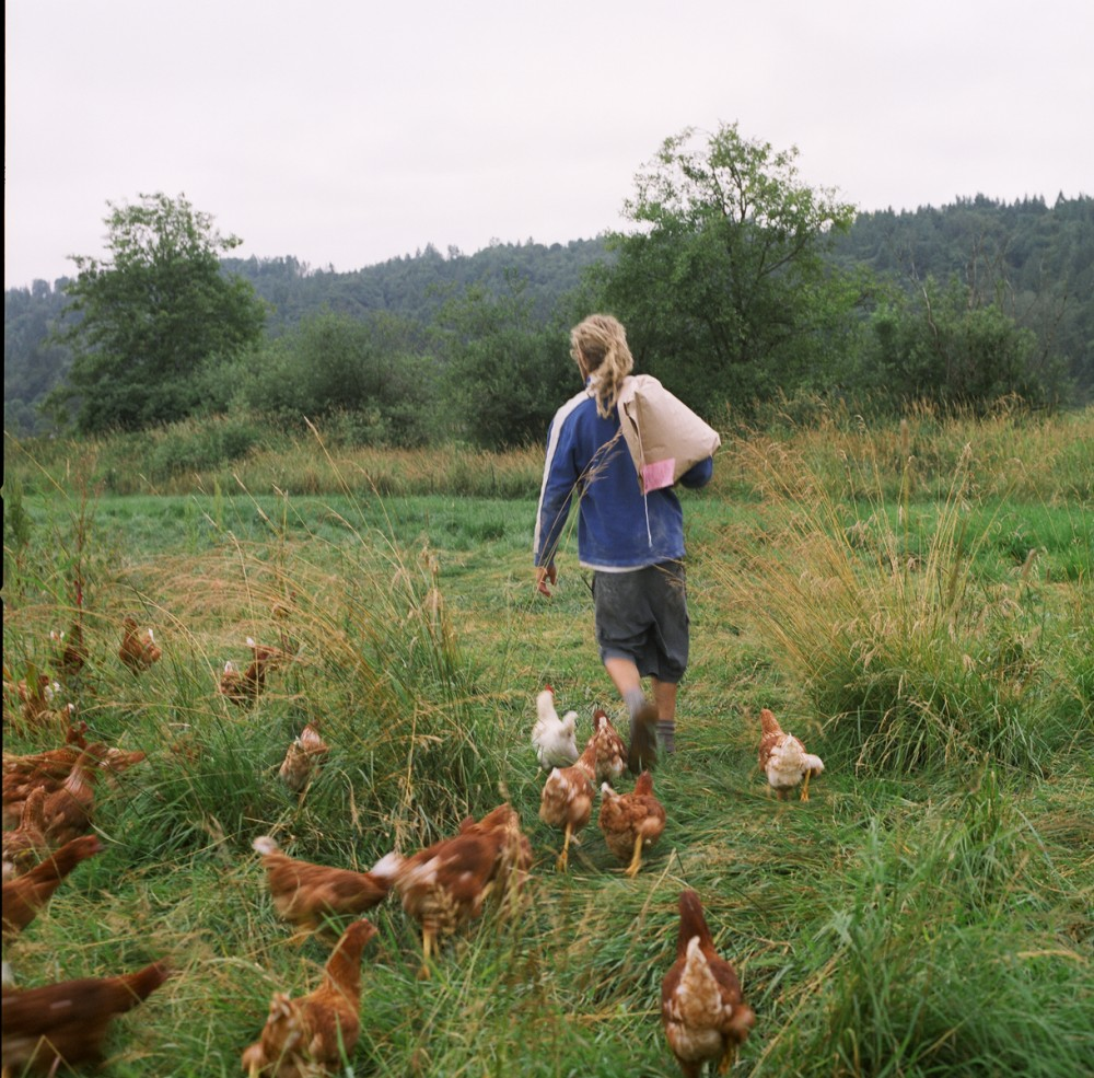 Art and Documentary Photography - Loading 15of20-davidson-blakefeedingchickens.jpg