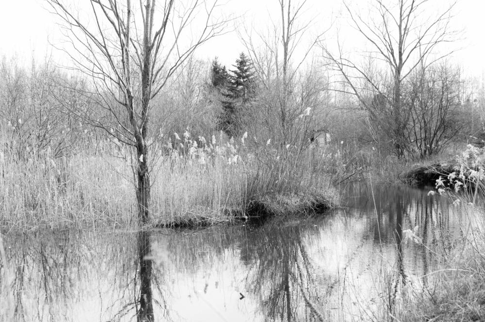 Photography image - Loading untitled (2 of 29).jpg