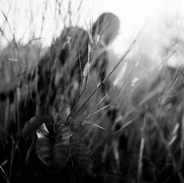 Art and Documentary Photography - Loading n013.jpg